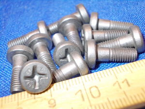 Titanium screw LN29943 M5x15 (12pcs.)