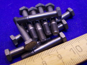 Titanium screw LN29943 M5x28 (12pcs.)