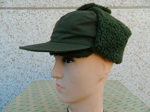 Sweden Army cap