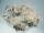 n.10 Kit viti assortite , totale 180 pezzi