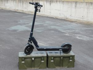 "Electric scooter 300W 36V wheel 10"", without controller"